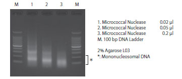 Analysis of nucleosomal DNA size distribution